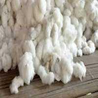 Cotton Fibers Manufacturers