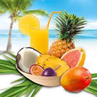 Fruit Flavor Manufacturers
