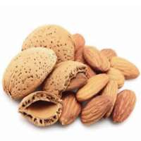 Almond Shell Manufacturers