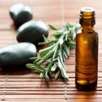 Organic Essential Oils Manufacturers