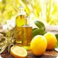 Citrus Fruit Oils Manufacturers