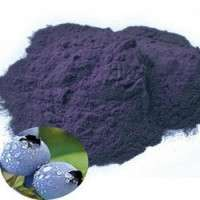 Bilberry Extract Manufacturers