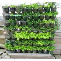 Vertical Gardening Services Importers