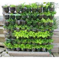 Vertical Gardening Services Manufacturers