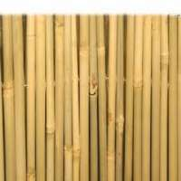 Bamboo Importers