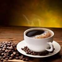 Ganoderma Coffee Importers