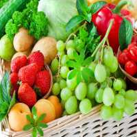 Food Enzymes Manufacturers