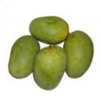 Langra Mango Manufacturers