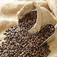 Cocoa Seed Extract Manufacturers