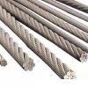 galvanized steel wire rope 6*7FC