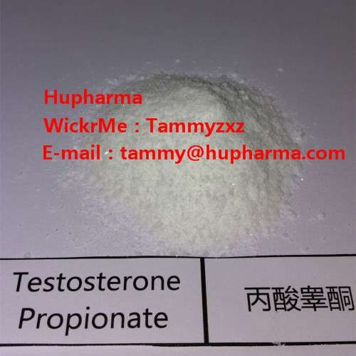 Hupharma Testosterone Propionate injectable steroids Powder