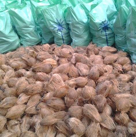 Sri Thangam Exports - Tamil Nadu, India