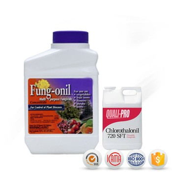 Organic Fungicides Chlorothalonil 75 Wp In Pesticide From
