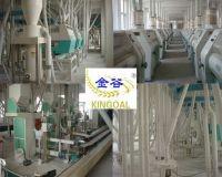 T wheat flour mill machine