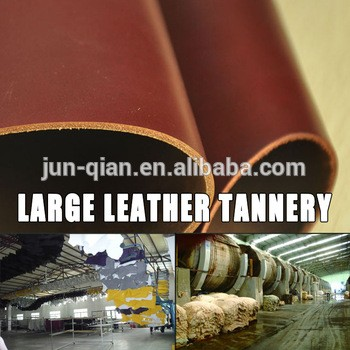 d1e1ef1a1 Guangzhou Junqian Leather & Leather Products Co., Ltd. - Guangdong ...