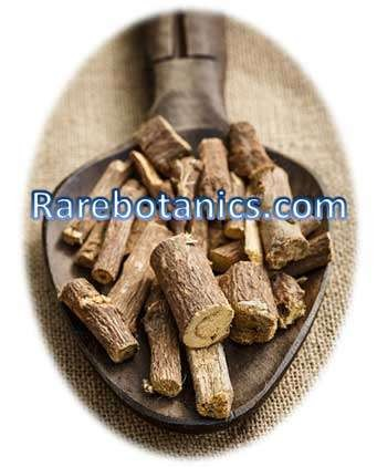 Licorice Roots Bulk Suppliers
