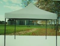 PREMIUM TENT TENTS 3x3m silver CANOPY