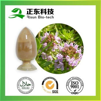 Pure Herbs Thyme Extract TLC 10:1 From Xi'an Risun Bio-Tech Inc